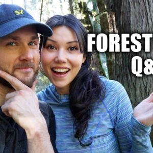 Q&A | FAKE MEATS, FOOD VARIETY, VEGAN PROTEIN ANXIETY & MORE